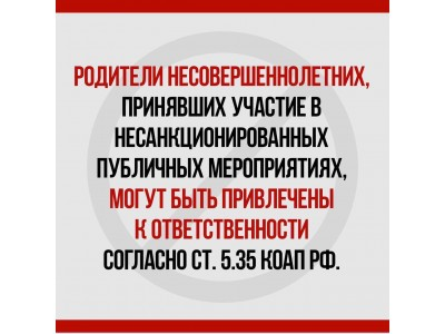 IMG 8330